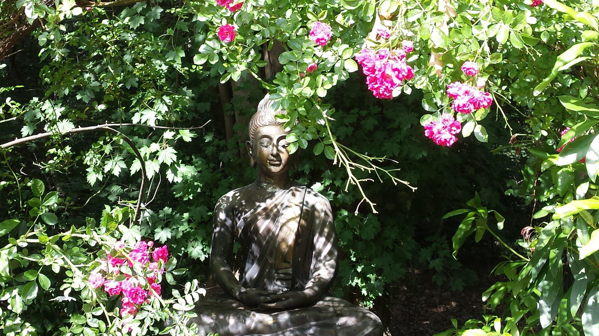 Buddha beeld omringt door bloemen. Ned School voor DO-IN
